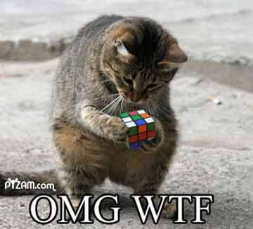OMG WTF funny picture