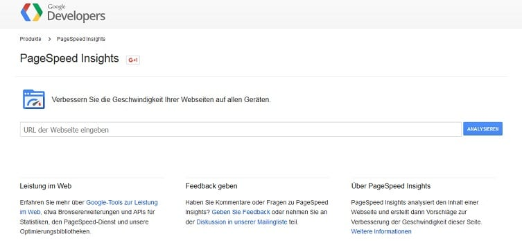 Screenshot von PageSpeed Insights.