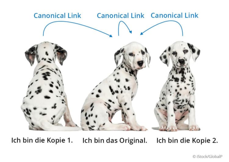 canonical link beispiel